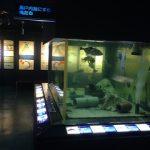 魚や牡蠣について楽しく学べる「広島市水産振興センター」