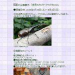 今日7/16(土)から広島市森林公園のこんちゅう館で「世界のカブト・クワガタ2016」が開催!