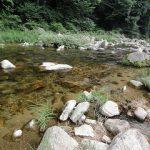 山に囲まれた自然の中、冷たい川で泳げる「レークサイド雉野原キャンプ場」