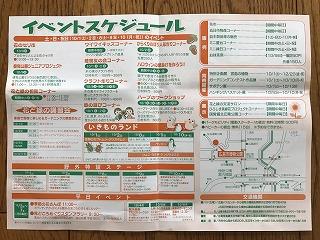 greenfair-02