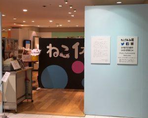 nekoyasumiten-03
