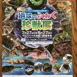 独特の進化を遂げた珍獣が大集合「地球のわくわく珍獣展」が7/27(木)~8/27(日)にアルパーク天満屋で開催!