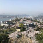 広島県尾道市にある「千光寺公園」は桜が見頃!尾道水道をバックに桜を楽しめます