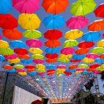 「マツダ スタジアム開場10周年記念『傘まつり』先行見学会」に参加してみました!