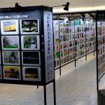 日本最大級の参加型写真展「50,000人の写真展2018」が紙屋町シャレオで!本日9/23(日)まで
