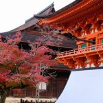 広島市内唯一の国宝「不動院」で紅葉が見頃に