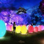 広島城が光のアート空間に!RCCテレビ60年「チームラボ 広島城 光の祭」が2/8(金)~開催