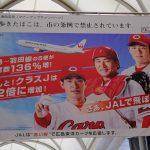 カープ観戦チケットも当たる!JALで「2019年頑張ろう!新年搭乗キャンペーン」開催中