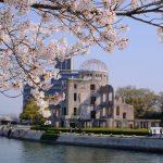 「広島平和記念公園」のサクラが満開を迎えています!