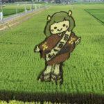 安芸高田市の「田んぼアート」は今が見頃!秋には稲刈りイベントも