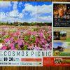 備北丘陵公園で9/14(土)~「備北コスモスピクニック2019」開催!無料入園日も