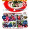 「勝鯉の森」で本日10/14(月・祝)に「クリーンナップ清掃」開催!カープファンは誰でも参加可