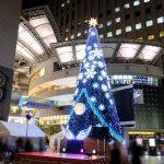 基町クレド・パセーラにイルミネーションで飾られたクリスマスツリーが登場!