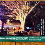 広島市植物公園の夜間イルミネーション「花と光のページェント」は本日11/23(土)~!