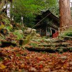知る人ぞ知る紅葉の穴場スポット?山の中で荘厳な空気に包まれる「福王寺山」