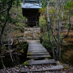 山奥の小さな池の中にある「福王寺 厳島神社」、静かな雰囲気が最高です!
