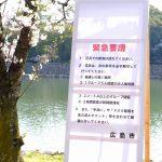 飲食は控えて短時間で!桜の満開を迎えた広島市でも花見の自粛要請