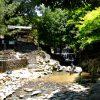 広島市内中心部からすぐ近く、自然豊かで川遊びも出来る「水分峡」(みくまりきょう)