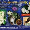 広島市植物公園で夜間開園「サガリバナと夜の植物の競演」開催!8/29(土)から