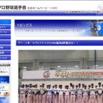 """<span class=""""title"""">「ベースボールクリスマス2020in福島」が12/6(日)に開催!オンラインイベントも</span>"""