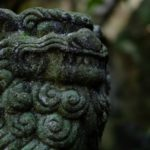 """<span class=""""title"""">紅葉の穴場スポット「琴比羅神社」で見頃を迎えていました!</span>"""