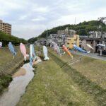 "<span class=""title"">がんばれカープ!今年も西区新庄町の川で元気に泳ぐ鯉のぼり</span>"
