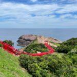 "<span class=""title"">日本の最も美しい場所31選にも選出!海に向かって建ち並ぶ赤い鳥居が美しい「元乃隅神社」</span>"